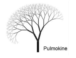 Early-Stage Pulmonary Arterial Hypertension Therapy From Pulmokine Awarded $1.5 Million Through Federally Funded VITA Contract